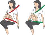Schwangerschaftsgurte